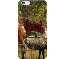 Clydesdale Horses iPhone Case/Skin