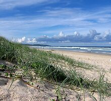 SEVEN MILE BEACH ~ Lennox Head by Bree Lucas