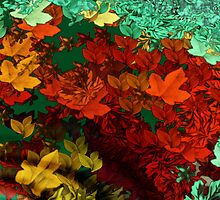 Autumn Leaves by maxy