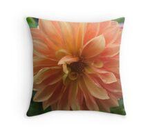 Peach Dahlia Throw Pillow