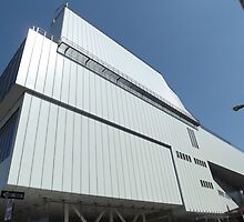 The New Whitney Museum on the High Line, Renzo Piano, Architect, New York City by lenspiro