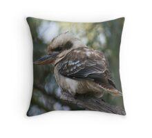 Kookaburra, Mt Remarkable National Park, South Australia Throw Pillow