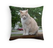 Max On The Watch Throw Pillow
