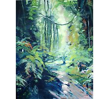 Happy Valley Mt Wilson, artwork by Ann Pigott Photographic Print