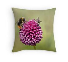 Bee and Fly punchup! Throw Pillow