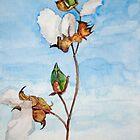 Barbados Cotton by Phyllis Dixon