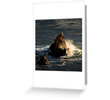 Ocean wave in the golden hour Greeting Card