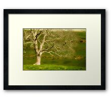 Every Fibre Of Being Framed Print