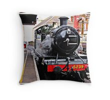 """ Dartmouth Steam Railway"" Throw Pillow"