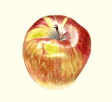 Apple by Maureen Sparling