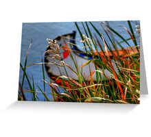 ALLURING Greeting Card