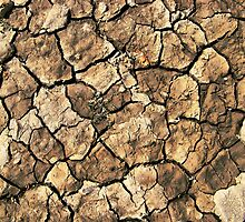 Dry Cracked Ground by jean-louis bouzou