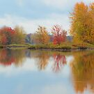 Time to Reflect by Beth Mason