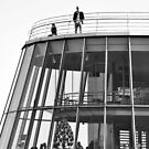 On the roof by STEPHANIE STENGEL   STELONATURE PHOTOGRAHY