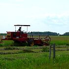 Swathing Hay by MaeBelle