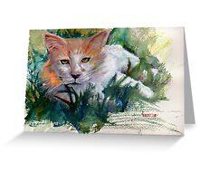 Community Cat Greeting Card