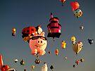The Albuquerque Balloon Fiesta 2009 by Paul Albert