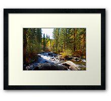 Bishop Creek Framed Print