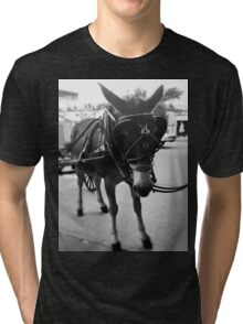 New Orleans Horse and Carriage Ride Tri-blend T-Shirt