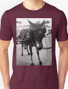New Orleans Horse and Carriage Ride Unisex T-Shirt