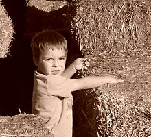 playin' in the hay by tego53
