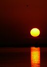 Sunset Music by JKKimball