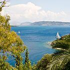 Room with a View II - Corfu by Sheila Laurens