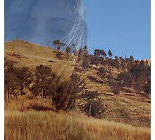 i like giants Photographic Print
