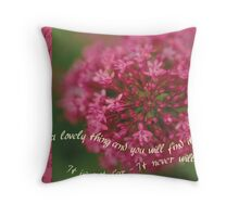 Look for a Lovely Thing... Throw Pillow