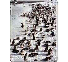 Colony of African Penguins, Boulder Beach, South Africa  iPad Case/Skin