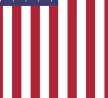 United States of Airstrikes Sticker