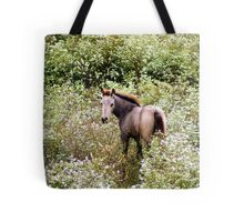 Colt Playing in the Wild Flowers! Tote Bag