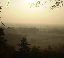 Misty Morning in Vicenza by Mui-Ling Teh