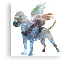 Space Milafly Canvas Print