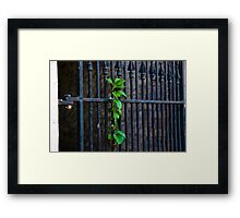 Iron and Greenery Framed Print