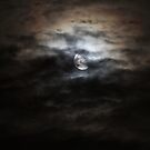Night Light by Steiner62