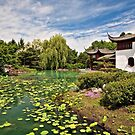 Chinese Gardens by PhotosByHealy