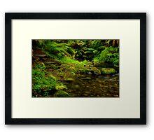 """Pathway Through Paradise"" Framed Print"