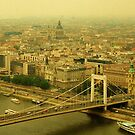 Budapest Panoramic View by longaray2