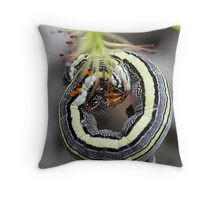 Inch Worm  Throw Pillow