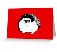 Che Erizo!(Hedgehog!) Greeting Card