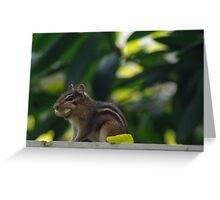 Alvin and His Peanut Greeting Card