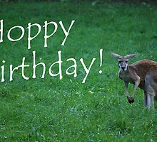 Hoppy Birthday Card  by Michelle BarlondSmith