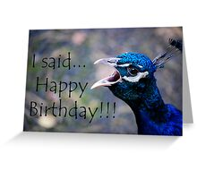 Birthday Card - Peacock  Greeting Card