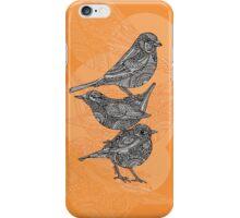 3 birds iPhone Case/Skin