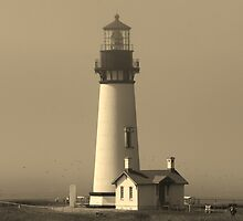 Lighthouse Yaquina head by RobertW3