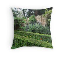 Beautiful Echium Yengo Mt Wilson Throw Pillow