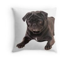 Funny Sleeping Black Pug Throw Pillow