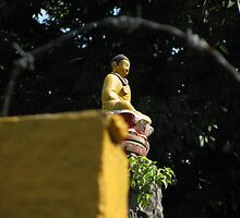 Buddha and Barbed Wire by kkilsby