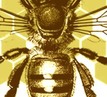 Bumble Hive Sticker